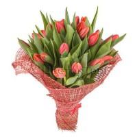 Букет из 21 красных тюльпанов