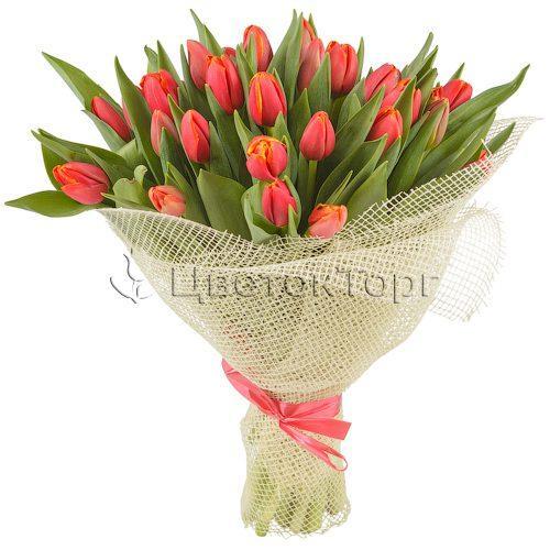 Букет из 33 Красных Тюльпанов