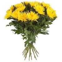 Букеты из 19 Желтых Хризантем