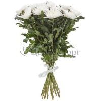 Букеты из 19 Белых Хризантем