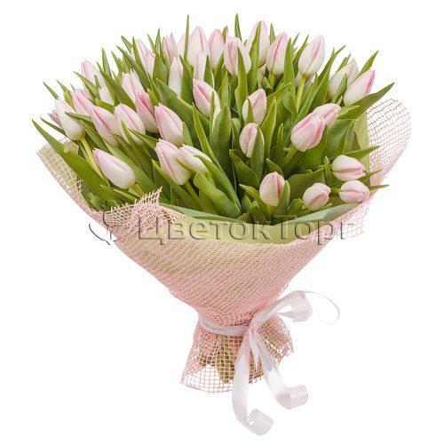 Букет из 51 Розовых Тюльпанов